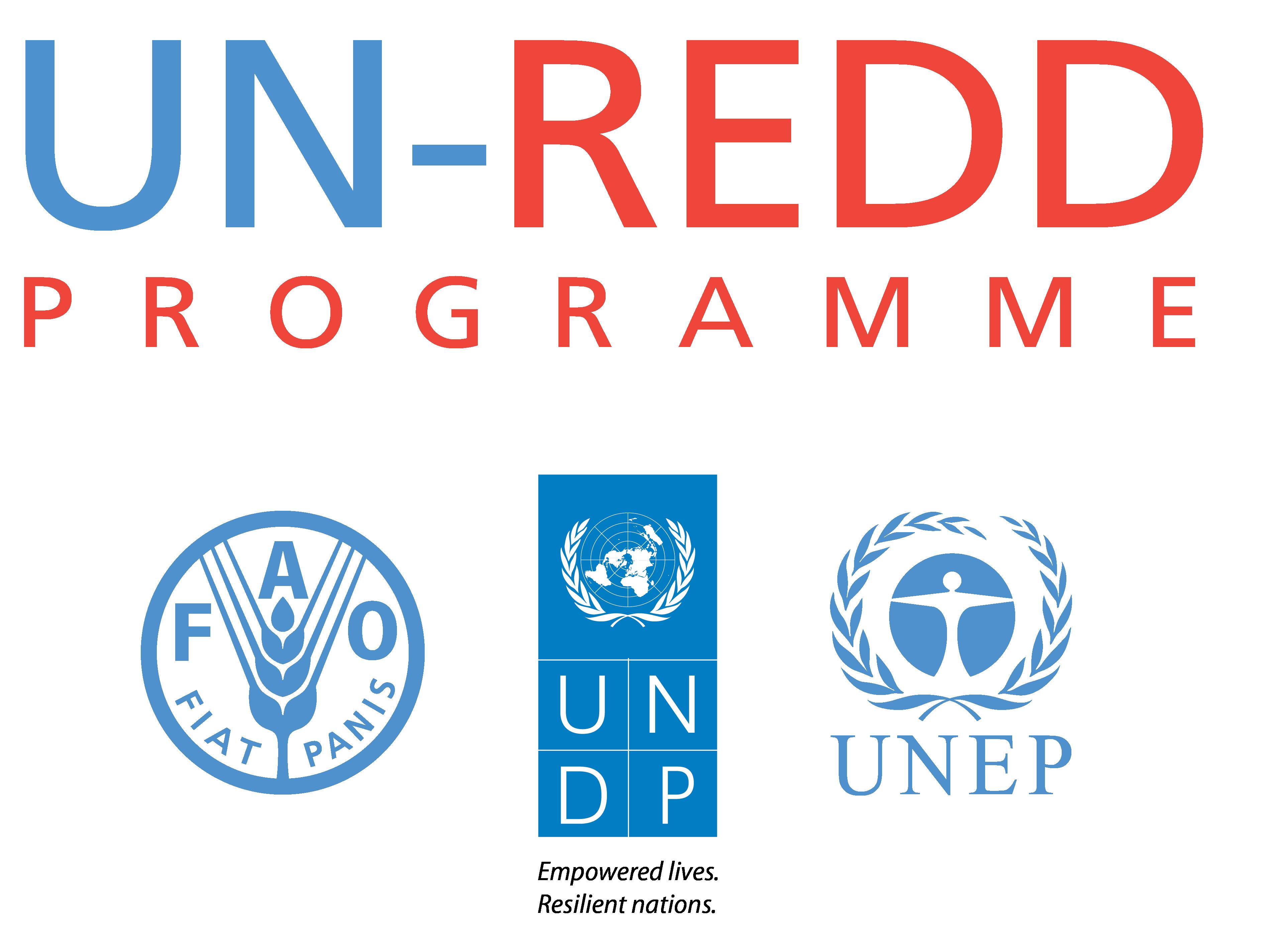 ONU-REDD